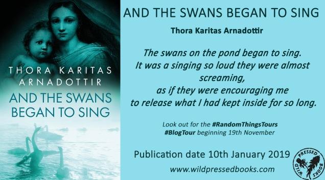 swans coverreveal banner.jpg